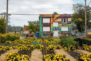 Image courtesy of the Michigan Urban Farming Initiative