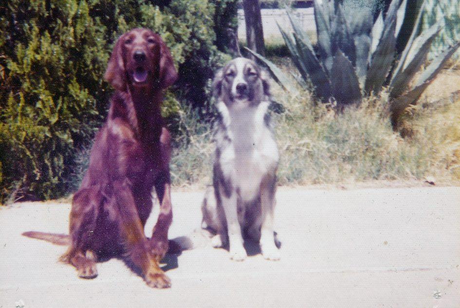 Gretchen & Fido